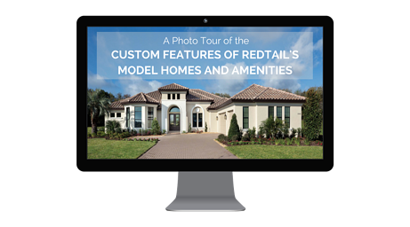 RedTail photo for landing page (2).png
